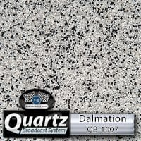 Dalmation QB-1007