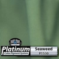 Seaweed P1530 Platinum Color Pigment